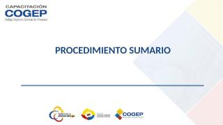 PROCEDIMIENTO SUMARIO COGEP.doc