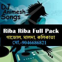 Riba Riba 13tn Version - (Hit Dance Mix) DJ AniMesh.mp3