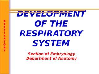 Respiratory development.ppt