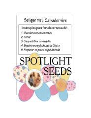 sementes de luz.doc